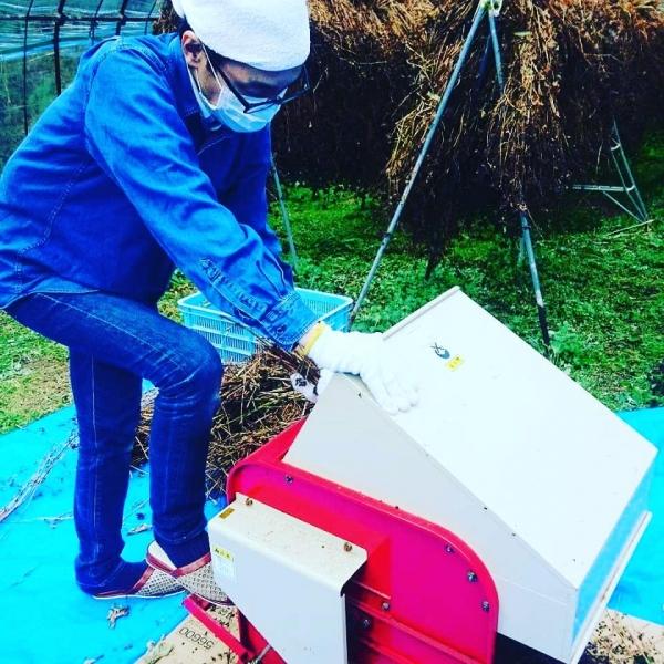 2020年 蕎自家栽培のお蕎麦を脱穀してきました。